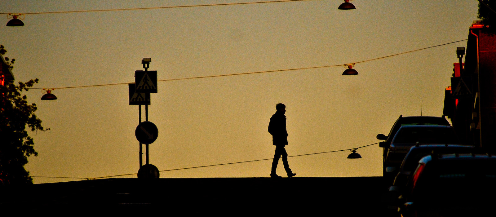 Why the Greatest Minds Take Long Walks