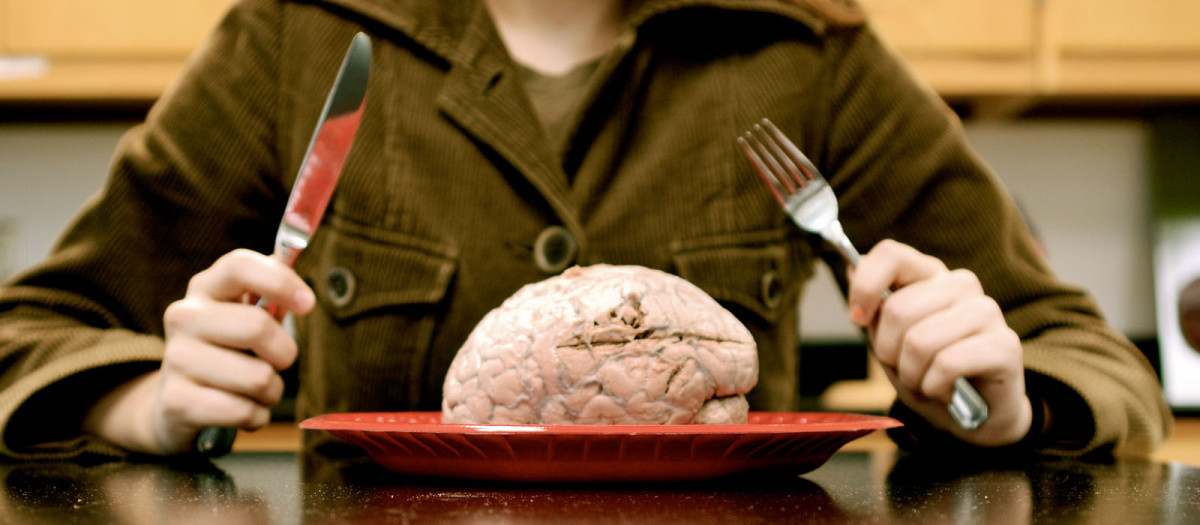 Eat Brains Like a Zombie: Why We Should Learn From Others